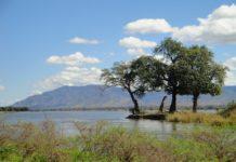 West Lunga National Park Zambia