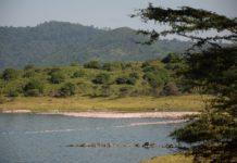 Arusha National Park Tanzania