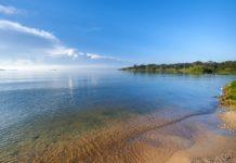 Rubondo Island National Park Tanzania