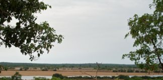 Parc National du Haut Niger