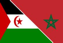 Polisario marokko