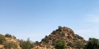 Wongo National Park Mali