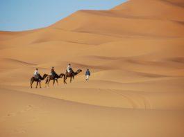 Iriqui National Park Marokko
